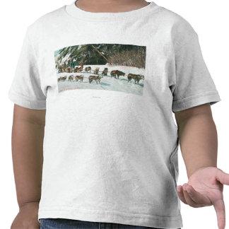 Vista de un equipo fornido del Perro-Trineo Camiseta