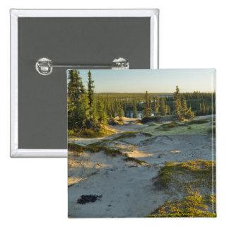Vista de un lago y de las colinas circundantes de  pin cuadrado
