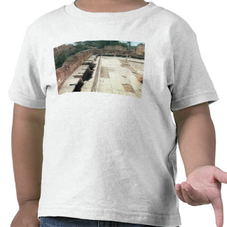 Vista de un servicio comunal camiseta