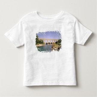 Vista del acueducto, c.19 construido A.C. Camisas