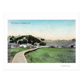 Vista del ArksLarkspur, CA Tarjeta Postal