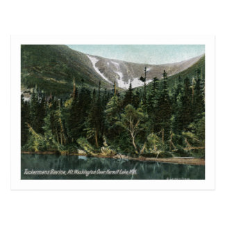 Vista del barranco de Tuckermans, Mt. Washington Tarjetas Postales