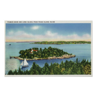 Vista del botón y de Long Island de la calabaza Póster