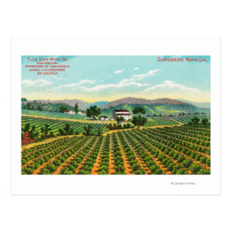 Vista del Giersberg VineyardNapa, CA Postales