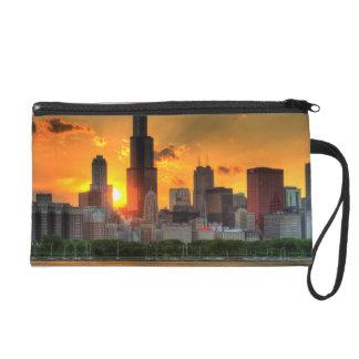 Vista del horizonte de Chicago de Adler