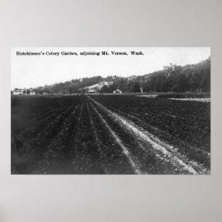 Vista del jardín del apio de Hutchinson Póster