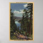 Vista del lago a través de los pinos # 2 poster