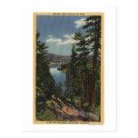 Vista del lago a través de los pinos # 2 tarjetas postales
