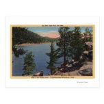Vista del lago a través de los pinos tarjetas postales