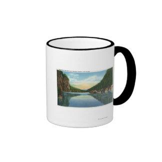 Vista del lago Colden del lago avalanche Tazas De Café
