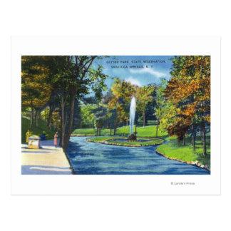Vista del parque del géiser tarjetas postales