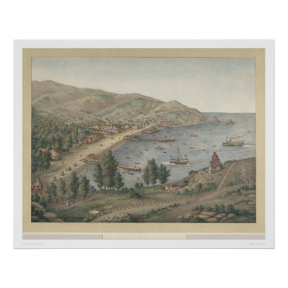 Vista del puerto de Avalon, isla de Santa Catalina Póster