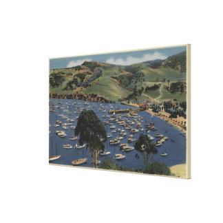 Vista del puerto del istmo lienzo envuelto para galerías