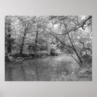 Vista del río póster