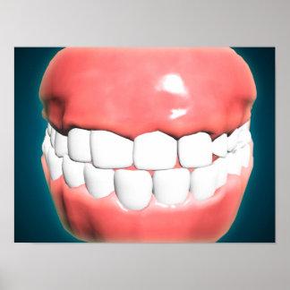 Vista delantera de la boca humana con los dientes póster