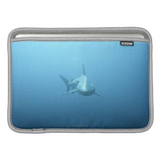Vista delantera de un tiburón de tigre fundas para macbook air