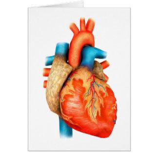 Vista delantera del corazón humano tarjeta de felicitación