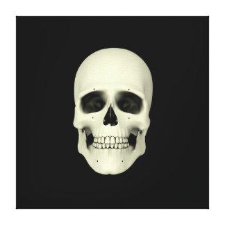 Vista delantera del cráneo humano lona envuelta para galerías