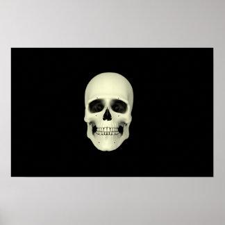 Vista delantera del cráneo humano póster