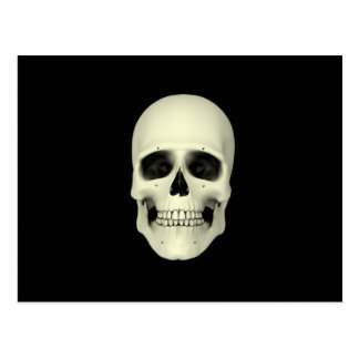 Vista delantera del cráneo humano postales