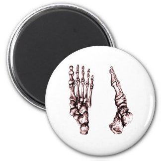Vista delantera y lateral de los huesos de los pie imán redondo 5 cm