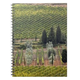 Vista elevada del viñedo y de olivos libreta espiral