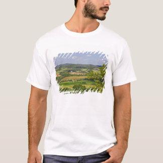 Vista escénica de las tierras de labrantío al sur playera