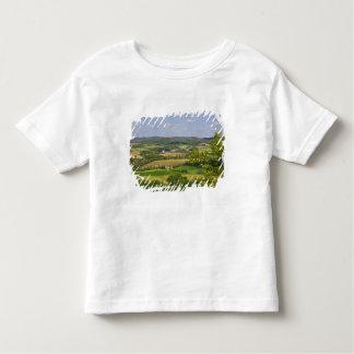 Vista escénica de las tierras de labrantío al sur playera de bebé