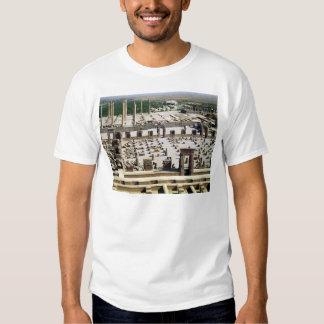 Vista general del palacio, período de Achaemenian Playeras