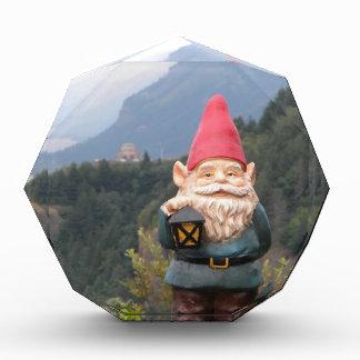Vista Gnome Award