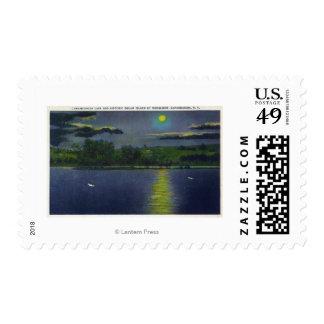 Vista iluminada por la luna de la isla y del lago sello