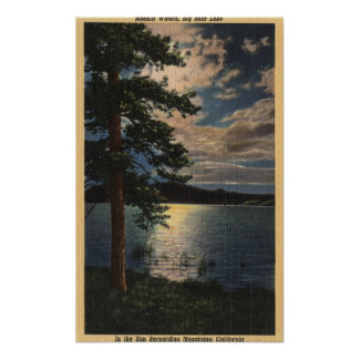 Vista iluminada por la luna del lago posters