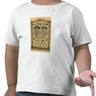 Vista ilustrada del mundo camiseta