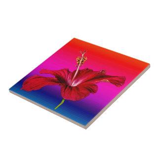 Vista lateral de la flor roja del hibisco azulejo cuadrado pequeño