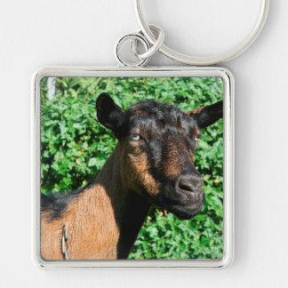 vista lateral de la gama de la cabra del oberhasli llaveros personalizados