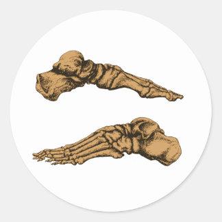 Vista lateral de los huesos de los pies - sepia pegatina redonda