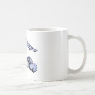 Vista lateral de los huesos de los pies - taza de café
