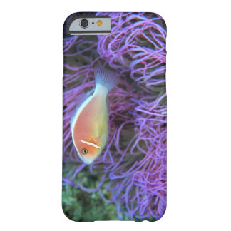 Vista lateral de un pescado de anémona rosado, funda barely there iPhone 6