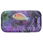 Vista lateral de un pescado de anémona rosado, Oki Galaxy S3 Coberturas