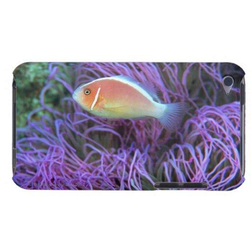 Vista lateral de un pescado de anémona rosado, Oki iPod Case-Mate Cárcasa