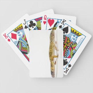 Vista lateral del lagarto del gecko del leopardo baraja cartas de poker