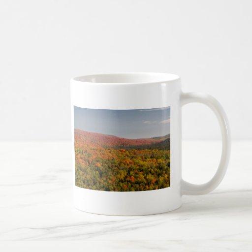 vista mugs