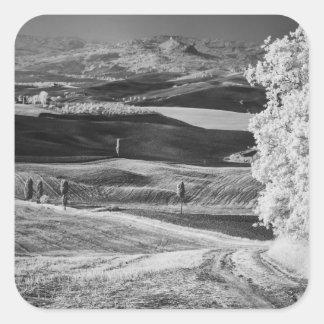 Vista negra y blanca de la carretera con curvas calcomanía cuadrada personalizada
