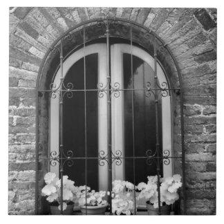 Vista negra y blanca de la ventana y de macetas azulejo cuadrado grande
