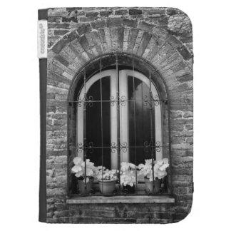 Vista negra y blanca de la ventana y de macetas