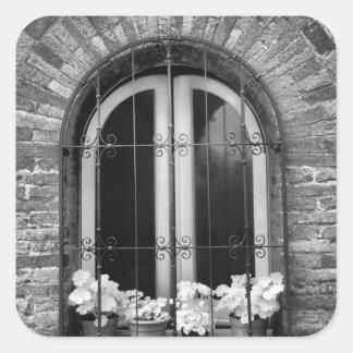 Vista negra y blanca de la ventana y de macetas calcomanía cuadrada