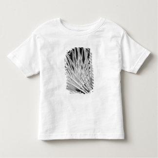 Vista negra y blanca de las frondas de la palmera camiseta