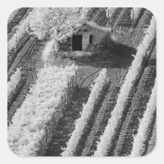 Vista negra y blanca del pequeño granero de piedra calcomanías cuadradases