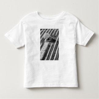 Vista negra y blanca del pequeño granero de piedra t shirts