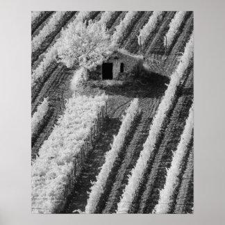 Vista negra y blanca del pequeño granero de piedra póster